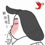 火烈鸟@新风鸟