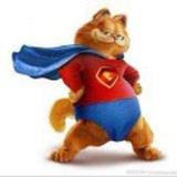 超级加菲猫
