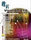 精彩Visual Basic 6.0學習範本.