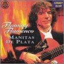 Flaming Flamenco