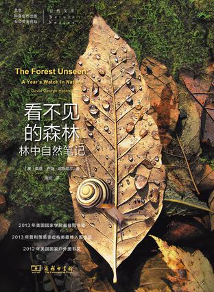 Book Cover: 看不见的森林