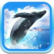 REAL WHALES  Find the cetacean! (iPhone / iPad)