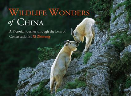《Wildlife Wonders of China》txt,chm,pdf,epub,mobi電子書下載