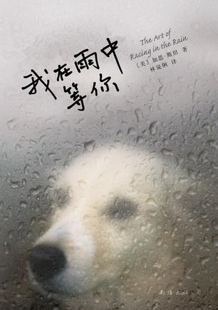 Book Cover: 我在雨中等你