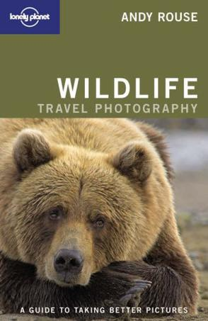 Wildlife Photography (How to)