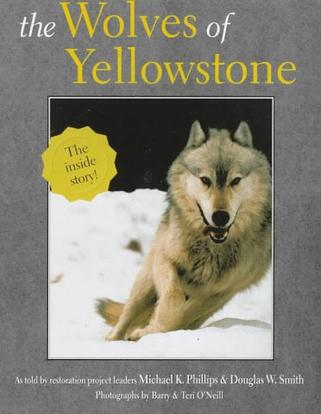 The Wolves of Yellowstone (Wildlife)