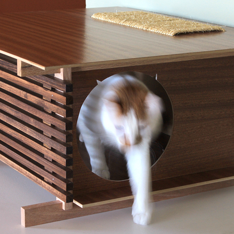 Modern Post and Beam Cat House From Davies Decor的图片