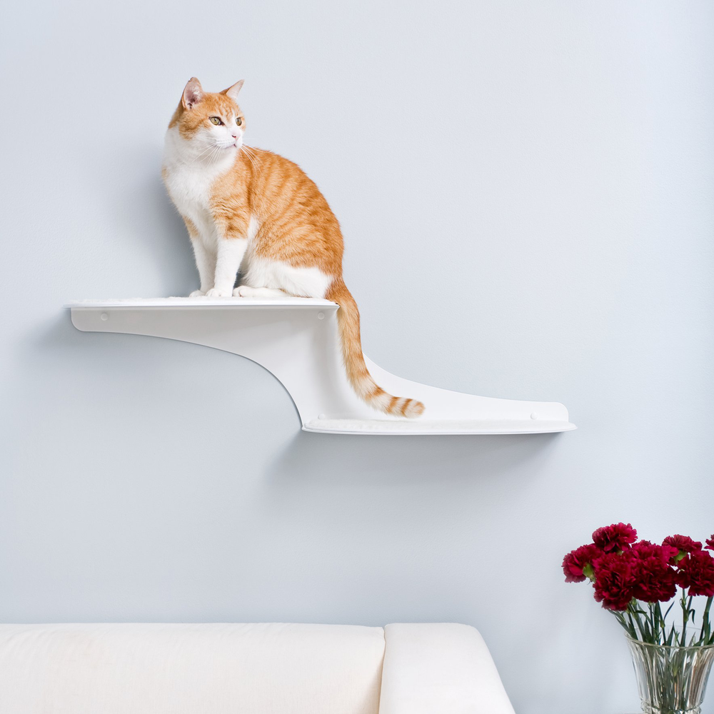 Cat Clouds Cat Shelves