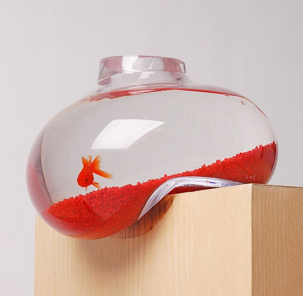 Bubble Tank by Psalt Design的图片
