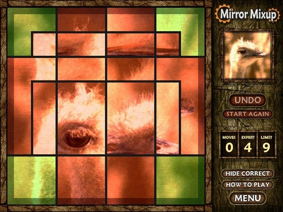 Mirror Mixup (iPhone / iPad)应用截图_5