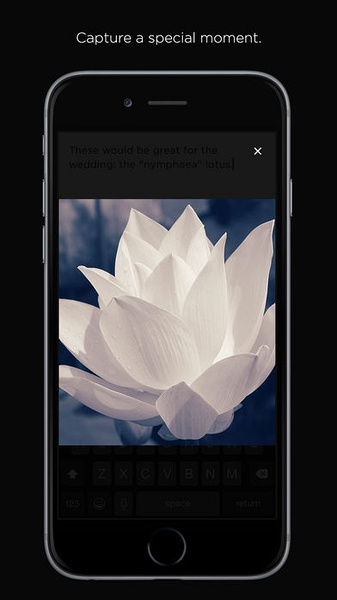 Squarespace Note (iPhone / iPad)应用截图_5