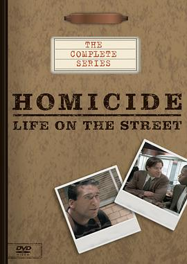 情理法的春天 第一季 Homicide: Life on the Street Season 1