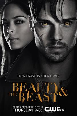 侠胆雄狮 第一季 Beauty and the Beast Season 1