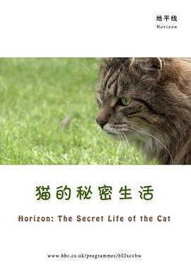 Horizon: The Secret Life of the Cat