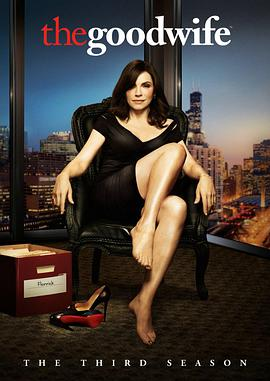 傲骨贤妻 第三季 The Good Wife Season 3