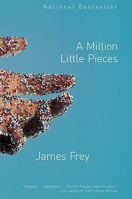 百万碎片 A Million Little Pieces