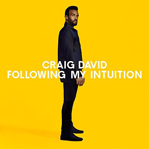 Craig David - Following My Intuition