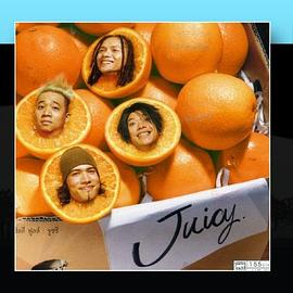 Silly Fools Juicy