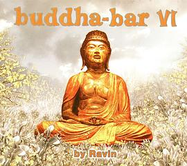 Buddha-Bar, Vol. VI