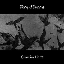 Diary of Dreams - Grau im Licht