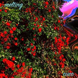 cuco - Melting (Cover)