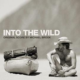 Michael Brook... - Into The Wild