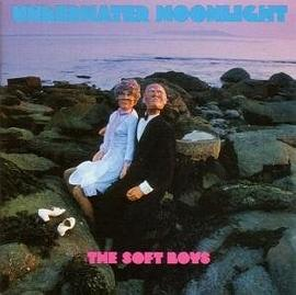 The Soft Boys - Underwater Moonlight . . . And How It Got There