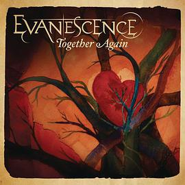 Evanescence - Together Again